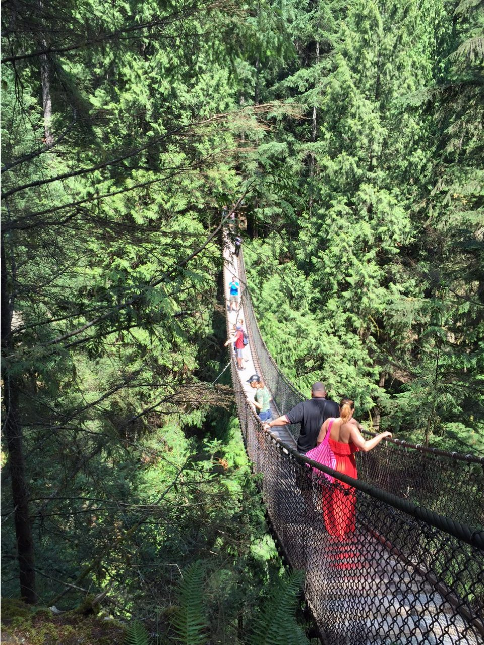 Lynn Canyon Suspension Bridge Vancouver Canada Abstract Heaven