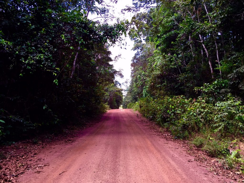The road to nowhere AKA interior Guyana