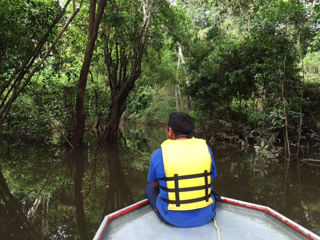 The boat ride to the Turtle Mountain trail took us through the flooded forest