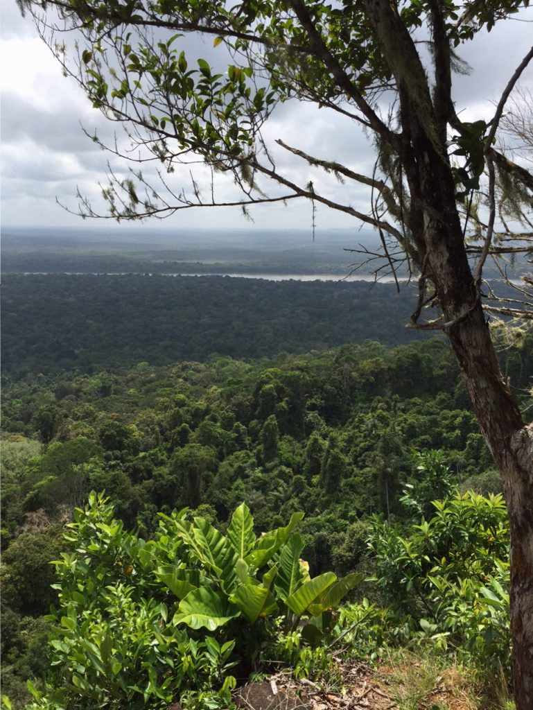 The view from Turtle Mountain
